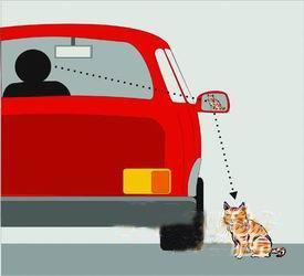 新手必看 倒车远没有驾校教的简单-2 第1张-库车驾校排名-报名电话-价格表-考驾照流程-科目考试技巧
